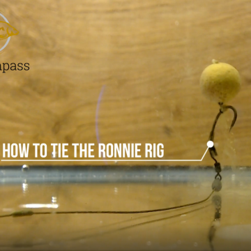 How to tie the Ronnie Rig